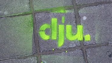 dju-Logo gelbgrün auf Steinpflaster